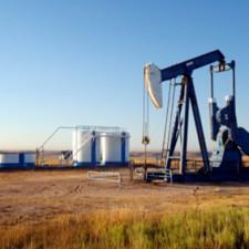 Oil-Pod-1